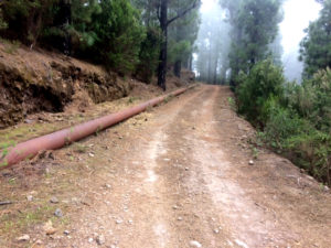 110417 Limpieza y desbroce de pistas forestales La Corona Campeches