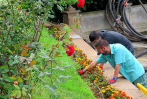 Archivo jardineros Realserv
